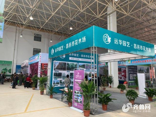 第八届黄河三角洲绿化苗木交易博览会在山东滨州开幕