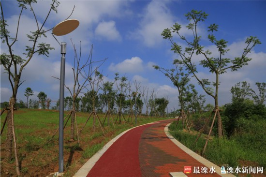 南京今年干旱严重,南京绿化公司为保卫绿色家园辛苦工作